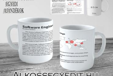 Software Engineer Alkossegyedit