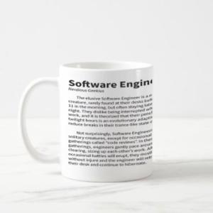 Software Engineer Baloldal