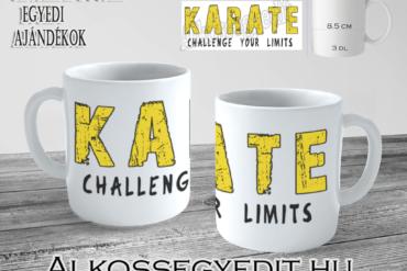 Karate Challange Limits Alkossegyedit